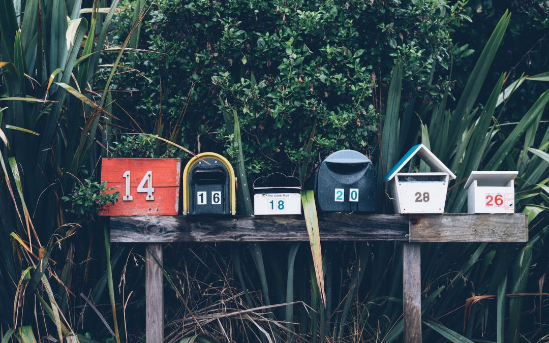 A Guide To Creating Your First Newsletter